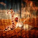 Desert Lure by StacyLee