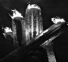 Olympic Cauldron - Vancouver 2010 by Roxanne Persson