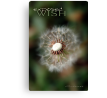 Exposed Wish © Vicki Ferrari Canvas Print