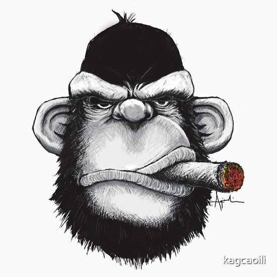 Buy cigar of the month gift - Cigar Monkey Kids Clothes