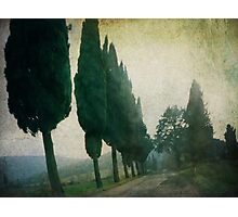 Toscana Vintage Photographic Print