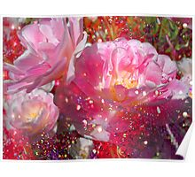 Lovely Tulips & Pink. Poster