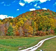 Autumn in those West Virginia Hills by Bryan D. Spellman