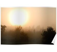 Sunrise in mist 2 Poster