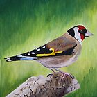 Perching Goldfinch by RCTrotman