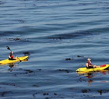 Kayaks -Monterey Bay California by MarthaBurns