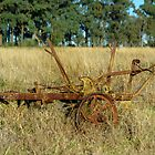 YELLOW SMALL HORSE DRAWN PLOW. by Helen Akerstrom Photography