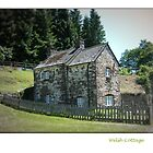 small welsh cottage by Joyce Knorz