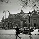 Champs Elysées by Laurent Hunziker