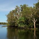 A bend in the billabong by georgieboy98