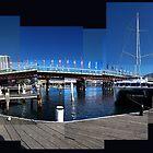 Sydney Panorama by ericafaery