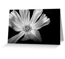 White Soul Greeting Card