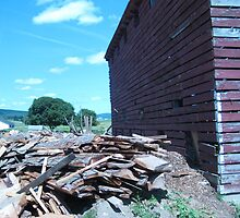 pile of wood next to a barn by bhavindalal