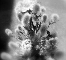 wildflower bouquet, black and white by Dawna Morton