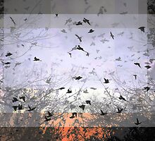 Composition With Ghosted Birds, Trees and Sky – July 15, 2010  by Ivana Redwine