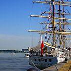 Dar Mlodziezy - Polish Ship by Gilberte