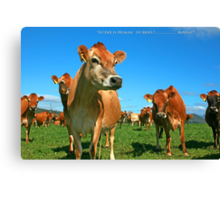 To Err is Human to Moo.........Bovine! Canvas Print