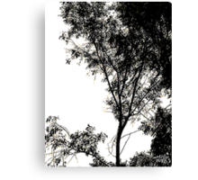 Tree DCCLX Canvas Print