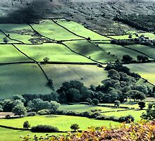 North York Moors by Robert Gipson