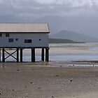 Wharf at Port Douglas by michswiss