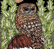 Owl Familiar by Anita Inverarity
