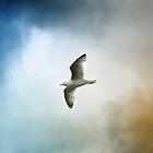 Flight by Sally Green
