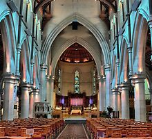 Christchurch Cathedralling ( 7 ) by Larry Lingard-Davis