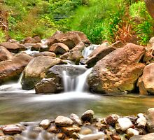 Running Waters at Iao Needle by Jessica Veltri