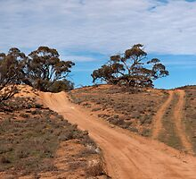 A Road Less Travelled by Ken Boxsell