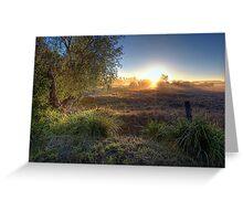 Tamborine • Queensland • Australia Greeting Card