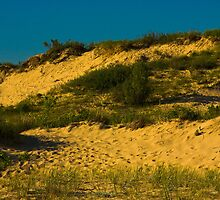 Oval Beach Dunes Saugatuck, Michigan by DunesLover