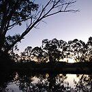 Winter at Cobaki creek by Graham Mewburn