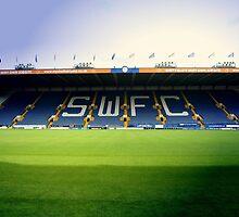 S.W.F.C  by Mike Higgins