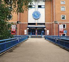 Hillsborough Ground by Mike Higgins