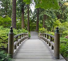 Foot Bridge at Japanese Garden by davidgnsx1