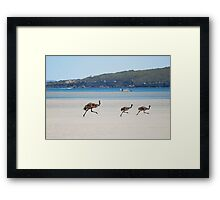 Dad might have longer legs but youth wins out Framed Print