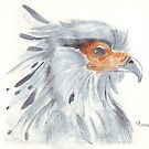 Secretary Bird by Maree Clarkson