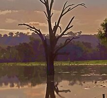The Tree in the Lake by bazcelt