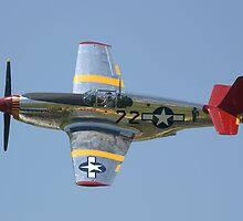"""INA The Macon Belle"" P51-C Mustang by Pirate77"