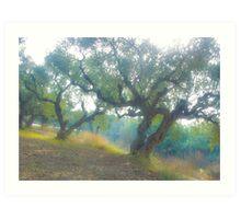 Views 3954***Olive trees. Zakintos. Greece. by Doctor Andrzej Goszcz.   Thanks  friends !!! Featured in Avant~Garde Art . Thanks !  Art Print