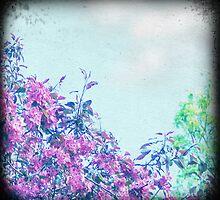 Cherry sky by sue mochrie