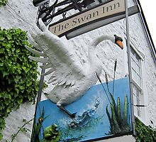 The Swan Inn pub sign, Tockington, Gloucestershire, UK by buttonpresser