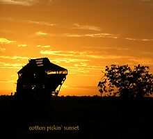 Cotton pickin' sunset by luv2hike