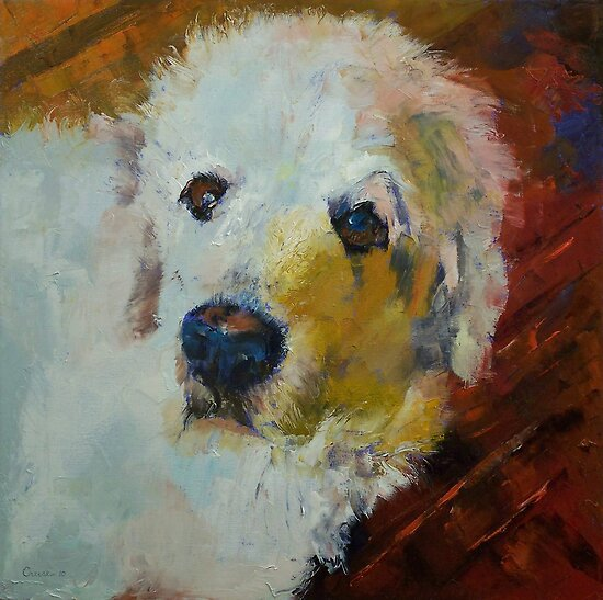 Great Pyrenees by Michael Creese