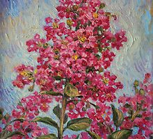 Crepe Myrtle by HDPotwin