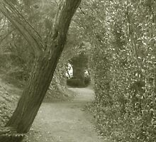 Secret Garden by Patricia Bier