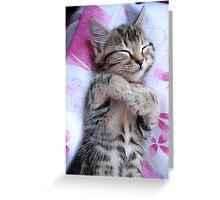 Is this not contentment? Greeting Card