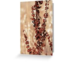 Weeds can be Beautiful Greeting Card