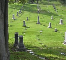 Graves @ Rose Hills Cemetary by selfevident