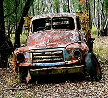 Abandoned Truck  by K Riley McDougall